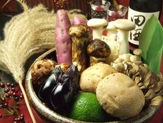 旬の食材 秋…《松茸・まいたけ…きのこ各種・旬野菜》