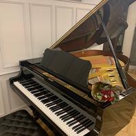 【グランドピアノの生演奏あり】ランチは毎日開催中!