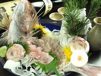 お祝いや結納などのお食事におすすめ「天然鯛の姿盛り」
