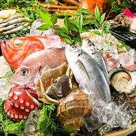 ★毎日直送!日本各漁港の新鮮魚介を堪能★「朝採鮮魚」