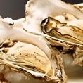 ■仙鳳趾より直送のブランド牡蠣 「鳳牡蠣」 食べれば違いが分かります。