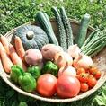 提携農家からの新鮮野菜を仕入れ 【北海道十勝郡浦幌町】水が澄んでいて美味しいところはやはり新鮮な鮮度の野菜が豊富に栽培されます。原産地より厳選した食材を仕入れております。豊富なミネラルを含んだ食材料理を是非ご賞味ください。【新橋/居酒屋/個室/飲み放題】