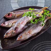 """沖縄県魚の""""グルクン""""は鮮度◎"""