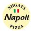 PIZZA NAPOLI ナポリ 新潟駅南けやき通り店のロゴ