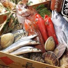 魚河岸料理 ざこばの特集写真