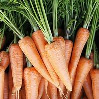 高山の契約農家から仕入れる野菜。