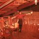 開放感のある吹き抜けの天井、広い店内でリラックス!