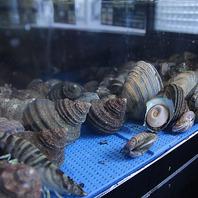 店内水槽で鮮度を保たれた活貝を浜焼きで!