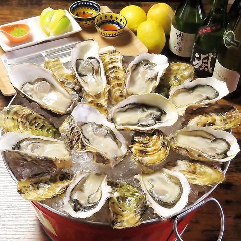 新鮮な浦村牡蠣の生牡蠣(15個)