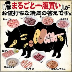 味噌とんちゃん屋 栄ホルモンの写真
