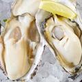 料理メニュー写真厚岸産 ぷりっぷり 牡蠣!