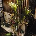 エントランス 店内は南国の植物がいっぱい