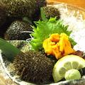 料理メニュー写真海水ウニ刺し