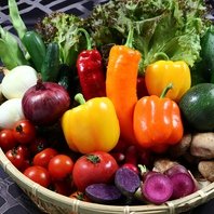 色とりどりの旬野菜を贅沢に使用!