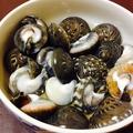 料理メニュー写真旬の貝焼き、貝刺し、貝蒸し