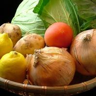太陽の恵み!!新鮮野菜!!