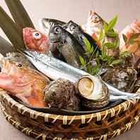天王寺で毎日旬のお魚を!