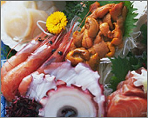 新鮮魚介たっぷり楽しめるコースは2種ご用意しております。お店自慢の料理をおいしいお酒と会話でお楽しみください♪