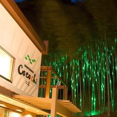 緑の谷のごちそうテラス CoCoChi ここちの特集写真