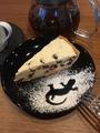 料理メニュー写真レアチーズタルト