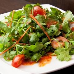 料理メニュー写真パクチーサラダ「ヤム・パクチー」