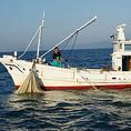 朝5時に漁に出て10時に漁港に戻ります♪
