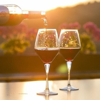 自然派ワインに有機野菜。食べることをポジティブに。
