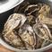 播磨灘燦殻付蒸し牡蠣 小