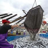北海道の旬の食材をお客様へ。北海道の名物を厳選し、職人が目利きした旨いものにこだわって仕入れ!新鮮な肉、北海道の野菜、自慢の魚をお楽しみください。