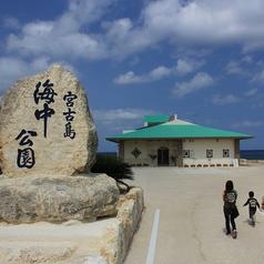 年間を通して多くの観光客が訪れる宮古島海中公園内に併設されており、海中公園入園とのお得なセット料金もあります!
