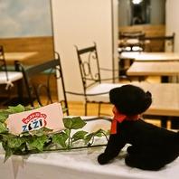 【オーナーの大切な猫『ZiZi』がモチーフの可愛い店内】