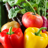 【新鮮野菜】旬の野菜をふんだんに♪神奈川県藤沢市『にこにこ農園』から直送!農薬・化学肥料を一切使わず栽培。 美味しさがギュッと詰まった季節の野菜をご堪能ください!女性に嬉しいクーポンが♪朗報です!女子会コース2000円をご注文の方限定で温野菜の盛り合わせおかわり1回サービス!!
