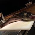 通常のメニューにないお料理も仕入れ状況によってご提供しています。※写真は幻の川魚と言われる【イトウ】です。