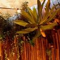 植物も生い茂るデッキ。マイナスイオンが◎