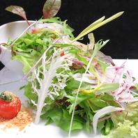 カネイファームの溢れるグリーンサラダ
