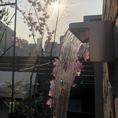 屋上ガーデンにあるフォーターフロント。
