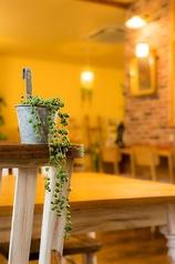 Cafe de Vert カフェ ド ヴェールの雰囲気1
