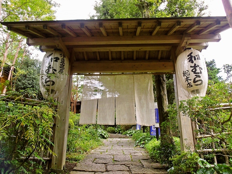 美しい日本庭園を眺めながら落ち着いた雰囲気で食事ができる地元でも有名な老舗店。