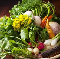 【彩りも鮮やか】地物の鎌倉野菜をふんだんに使用♪