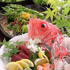 地鶏と鮮魚のお店 あおいやのおすすめ料理1