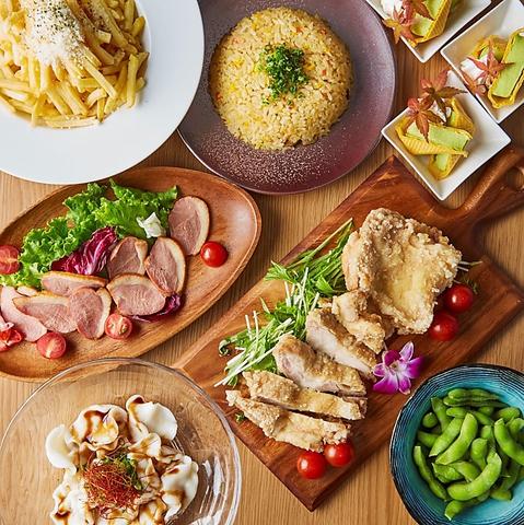 ◆満開コース◆若鶏の炙り焼き・手羽先の香味揚げ〈飲み放題3H+料理9品〉