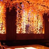 桜満開のお洒落なデザイナー空間。