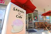 SAKURA cafe サクラ カフェ つくばの雰囲気3