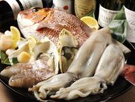 魚介類も豊富!コースで旬の食材を。