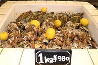 鮮度抜群の状態のムール貝と牡蠣!