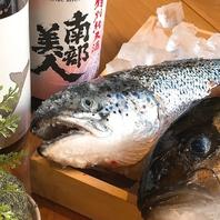 北の魚「鮭」をつまみに、厳選の銘酒を楽しむ大人の空間