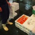 競りで入札した鮮魚は、その日のうちに店へ直送され、調理されます!