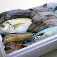 毎日仕入れる鮮度抜群の鮮魚は身が締り脂ののった上質のものを厳選。四季折々に移り変わる旬鮮魚もお楽しみ頂けます。その日の仕入れのおすすめを贅沢に盛り付けたお造りもご用意◎確かな目利きと素材の味を是非ご賞味ください。