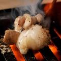 料理メニュー写真牛ホルモン脂つき(味噌・塩)/上ホルモン(味噌・塩)