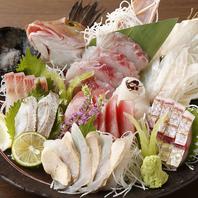 北陸・山陰の目利き仲売人直送!鮮魚を使用した逸品料理